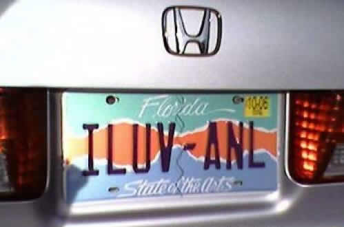 ILUV ANL  License Plate
