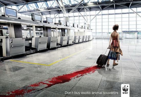 Don't Buy Exotic Animals Ad