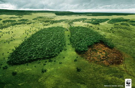 WWF Forest Lungs Ad