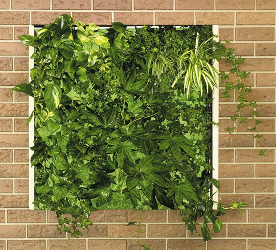 5 awesome vertical garden ideas to decorate your home for Vertical garden designs